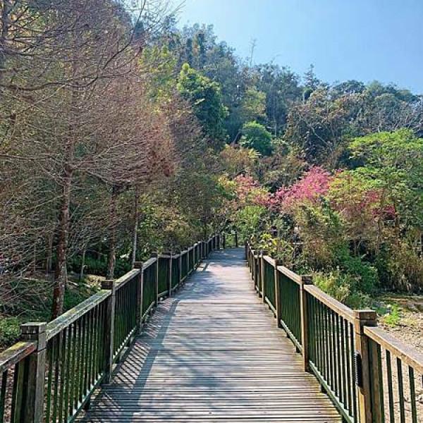 南投縣 觀光 觀光景點 伊達邵親水步道