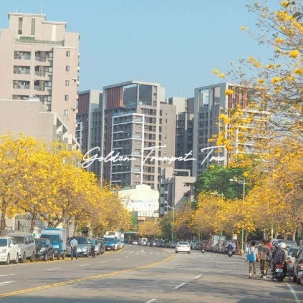 台中市 觀光 觀光景點 太順路黃金風鈴木