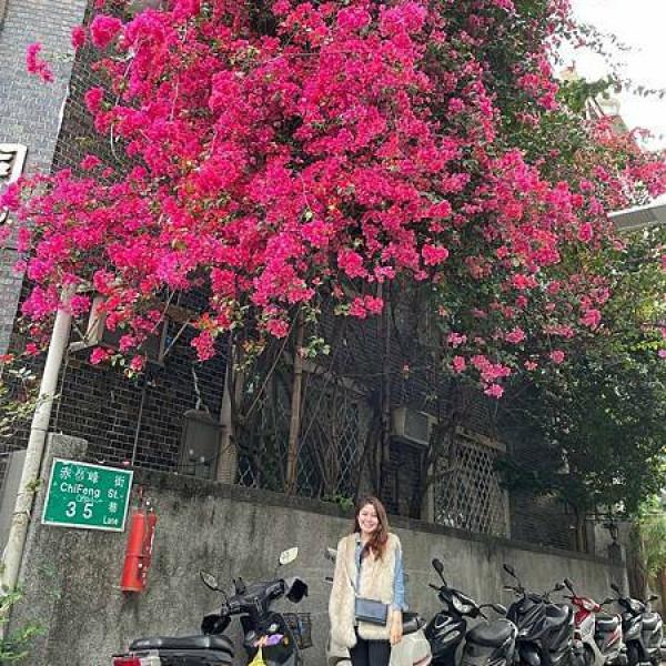 台北市 觀光 其他 赤峰街35巷