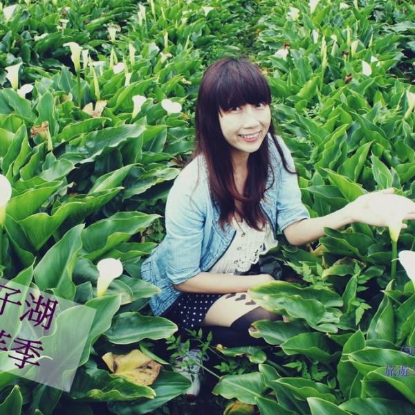 台北市 休閒旅遊 景點 公園 竹子湖