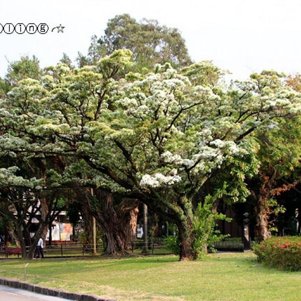 台北市 觀光 公園 二二八和平紀念公園