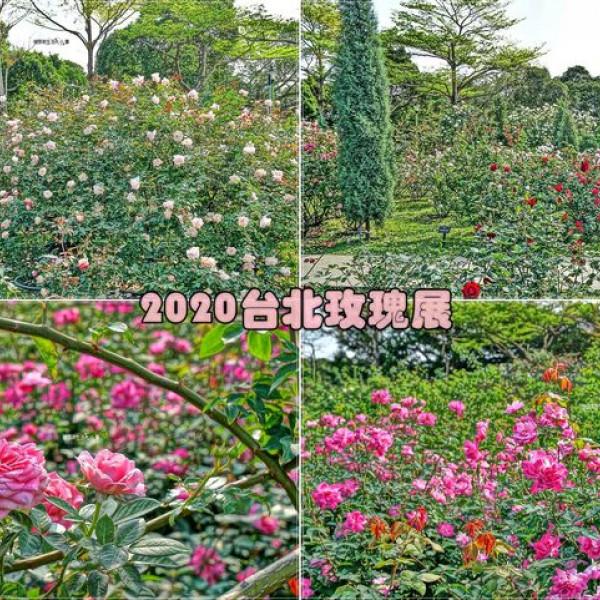 台北市 觀光 公園 新生公園