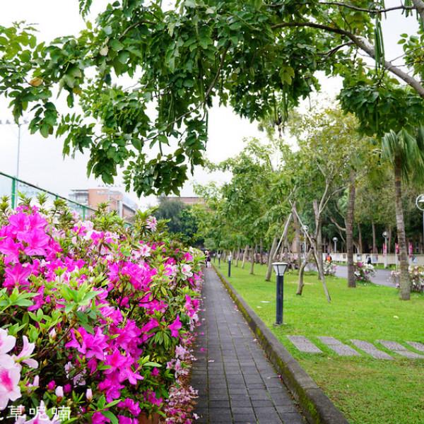 台北市 觀光 觀光景點 台灣大學