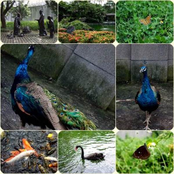 台北市 觀光 觀光景點 至善園