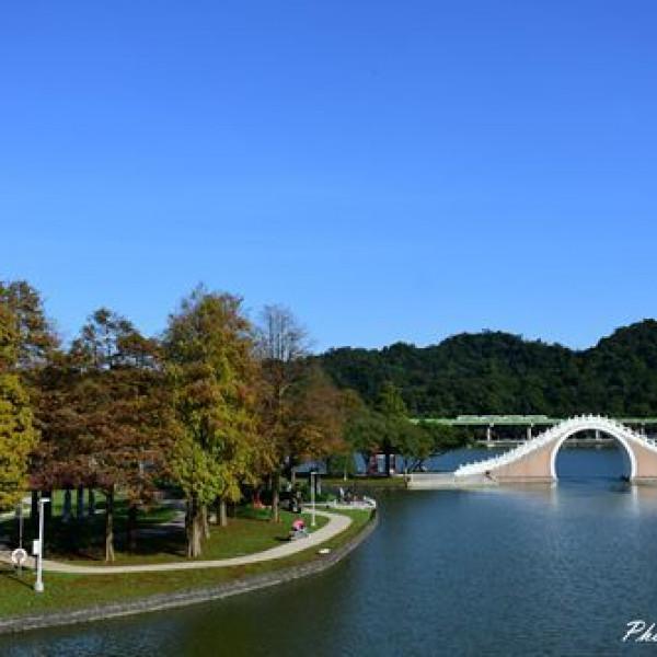 台北市 觀光 公園 大湖公園