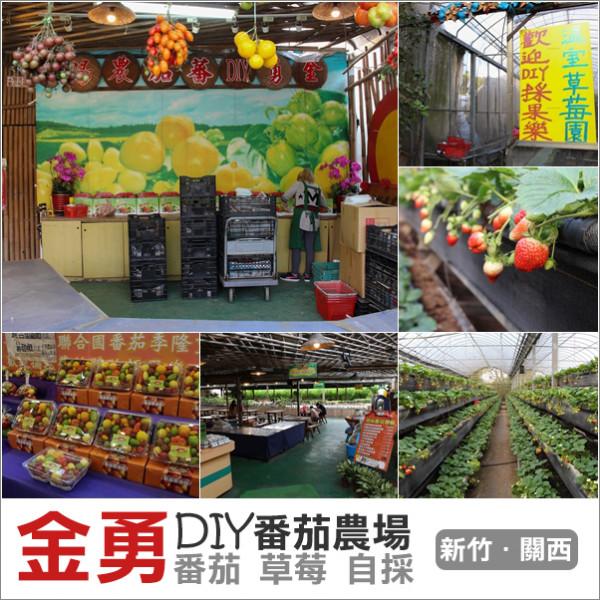 新竹縣 觀光 觀光工廠‧農牧場 金勇DIY觀光農場