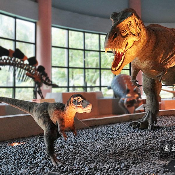台中市 觀光 博物館‧藝文展覽 國立自然科學博物館