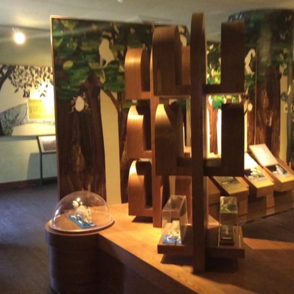 宜蘭縣 觀光 博物館‧藝文展覽 冬山森林生態館