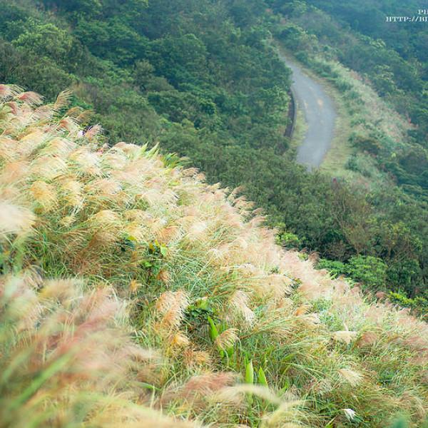 宜蘭縣 休閒旅遊 景點 景點其他 草嶺古道