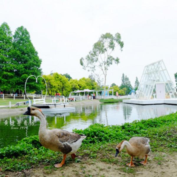 桃園市 休閒旅遊 景點 觀光農場 富田花園農場