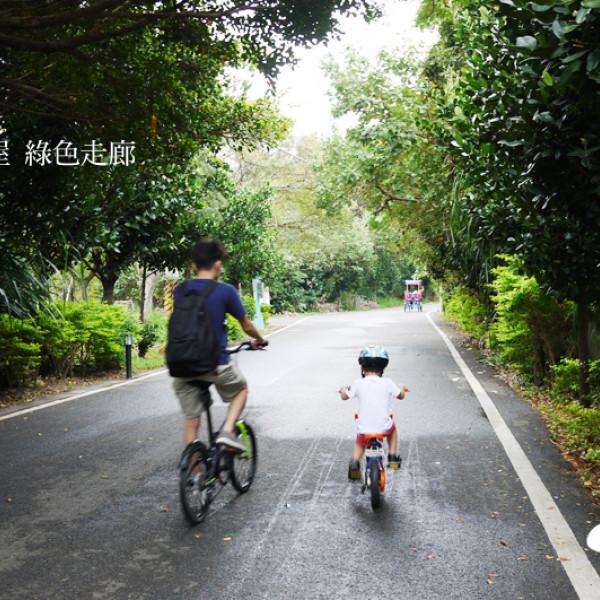 桃園市 休閒旅遊 景點 景點其他 新屋綠色隧道(綠色走廊)