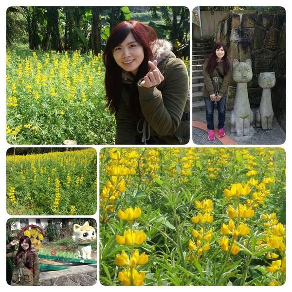 台北市 休閒旅遊 景點 景點其他 貓空