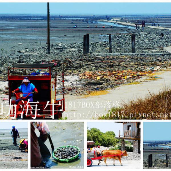 彰化縣 休閒旅遊 景點 海邊港口 王功漁港