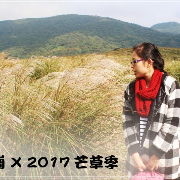 台北市 休閒旅遊 景點 景點其他 擎天崗