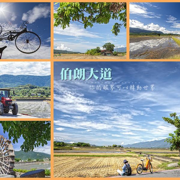 台東縣 休閒旅遊 景點 景點其他 伯朗大道
