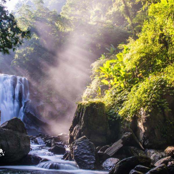 新北市 休閒旅遊 景點 森林遊樂區 內洞國家森林遊樂區