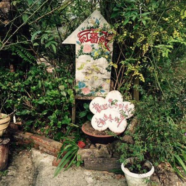 新竹縣 觀光 觀光景點 尖石紅薔薇景觀咖啡
