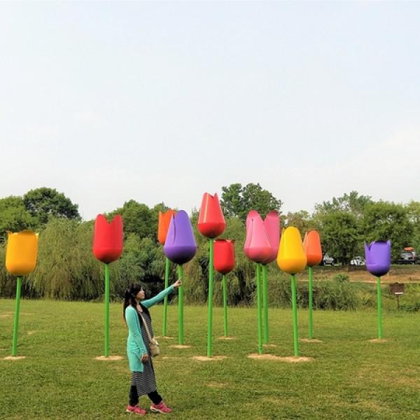 台南市 休閒旅遊 景點 觀光農場 德元埤荷蘭村