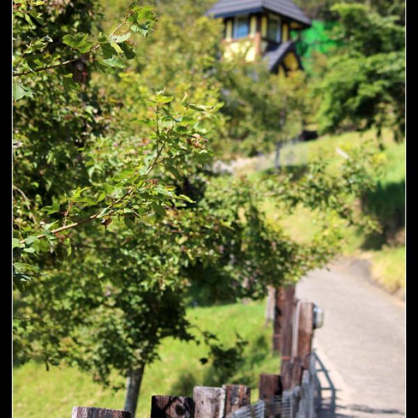 南投縣 休閒旅遊 景點 景點其他 貝卡巧克力莊園