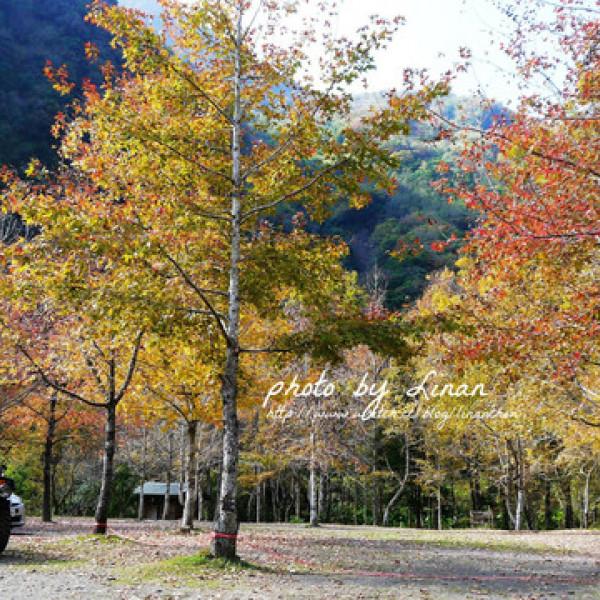 新竹縣 休閒旅遊 住宿 露營地 美樹營地
