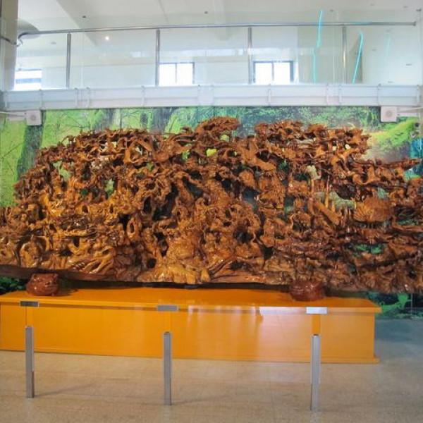 宜蘭縣 休閒旅遊 景點 觀光工廠 菌寶貝博物館