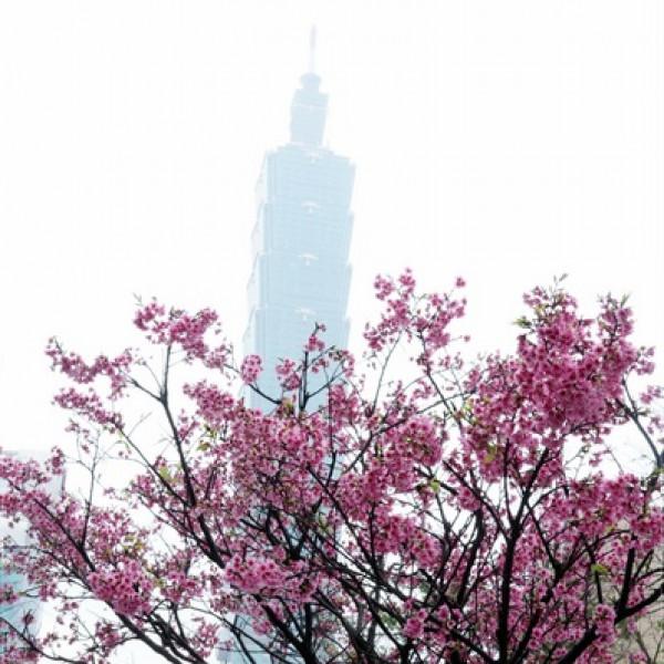台北市 休閒旅遊 景點 公園 松智公園