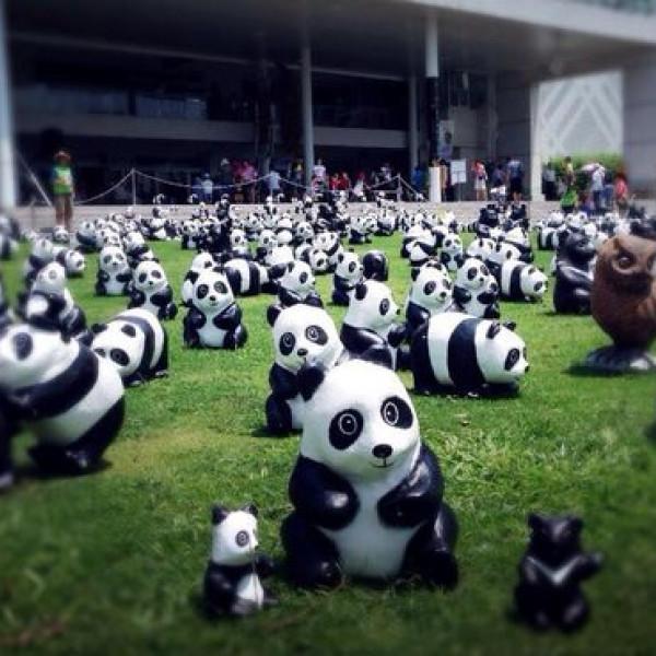 台北市 休閒旅遊 景點 展覽館 1600貓熊世界之旅