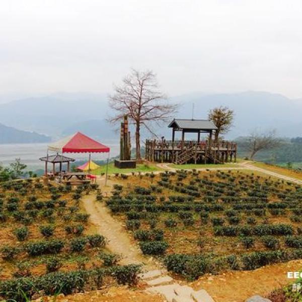 宜蘭縣 休閒旅遊 景點 觀光茶園 玉蘭茶園