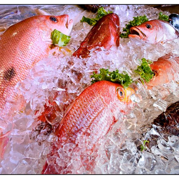 台中市 美食 餐廳 中式料理 台菜 梅子海鮮餐廳