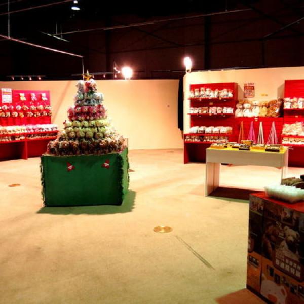 高雄市 休閒旅遊 景點 展覽館 韓國濟州泰迪熊特展
