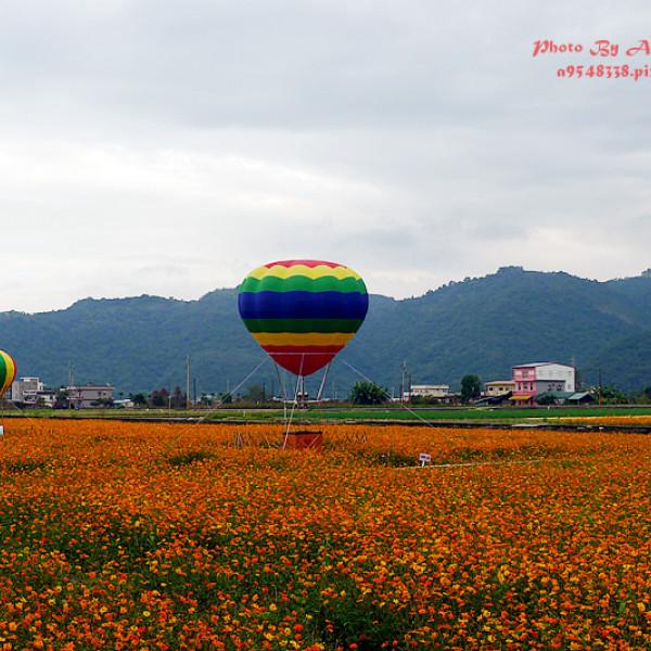 宜蘭縣 休閒旅遊 景點 景點其他 三星花海熱氣球嘉年華