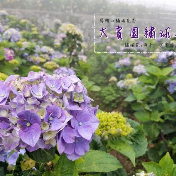 台北市 觀光 觀光工廠‧農牧場 大賞園海芋園
