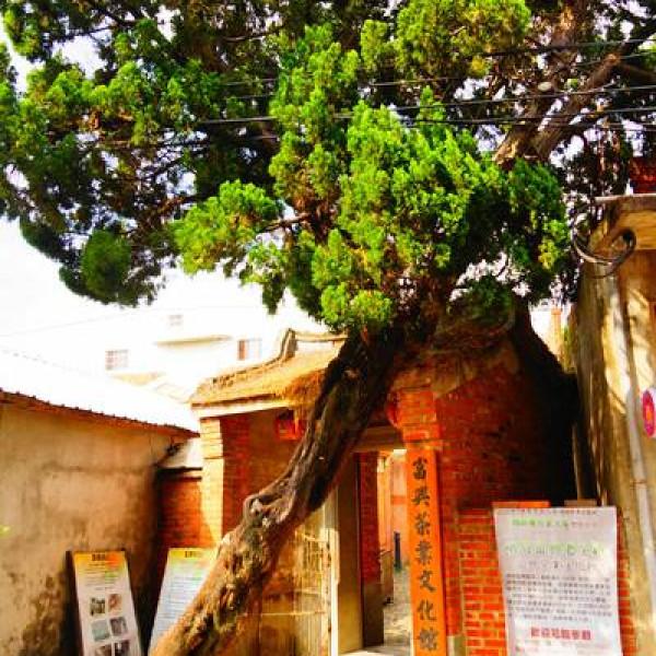 新竹縣 觀光 觀光工廠‧農牧場 富興茶業文化館