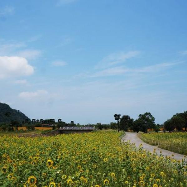 宜蘭縣 休閒旅遊 景點 公園 崙埤河濱公園