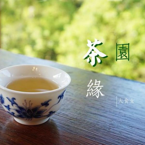 台北市 休閒旅遊 景點 觀光茶園 台北市鐵觀音包種茶研發推廣中心