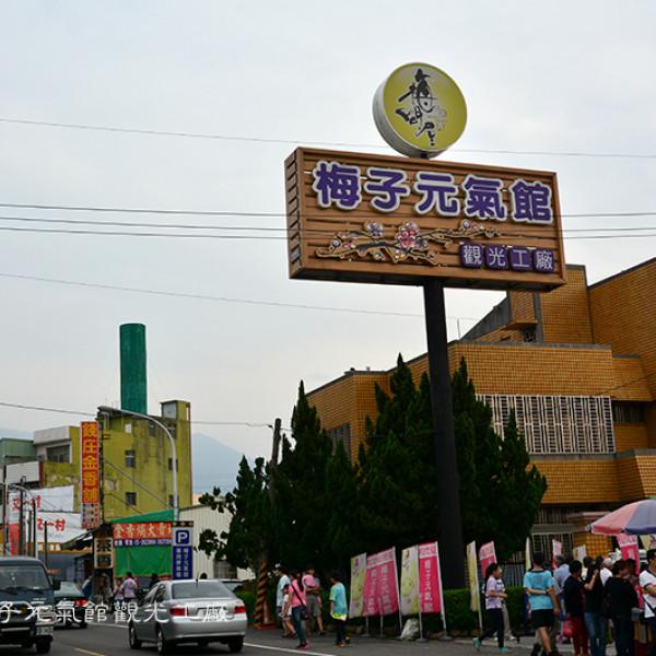 嘉義縣 休閒旅遊 景點 觀光工廠 梅子元氣館