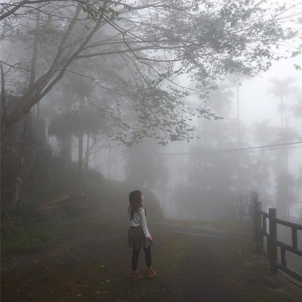 嘉義縣 休閒旅遊 景點 景點其他 觀音瀑布