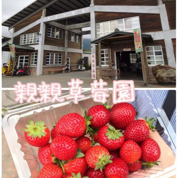 花蓮縣 休閒旅遊 景點 觀光果園 親親果園(親親草莓園)