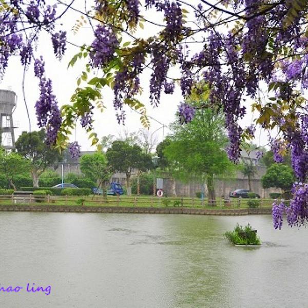 桃園市 休閒旅遊 景點 公園 龜山區大湖公園