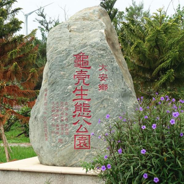 台中市 觀光 觀光景點 大安龜殼生態公園