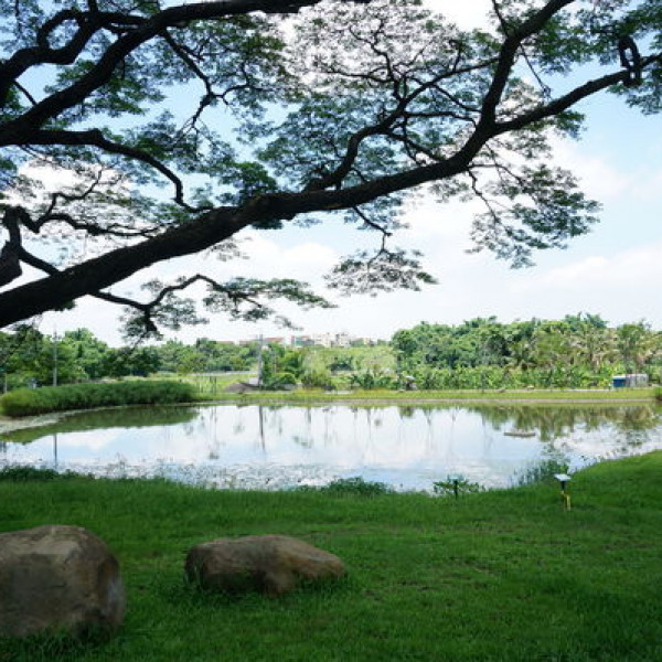 高雄市 觀光 公園 阿公店森林公園
