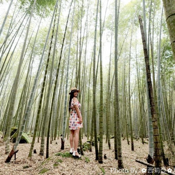 南投縣 觀光 觀光景點 長源圳生態步道