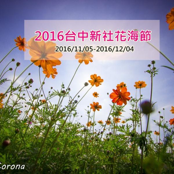 台中市 觀光 觀光工廠‧農牧場 2016新社花海