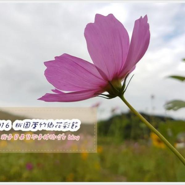桃園市 觀光 觀光工廠‧農牧場 2016桃園蘆竹花彩節