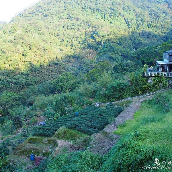 台北市 觀光 觀光景點 貓空壼穴平台