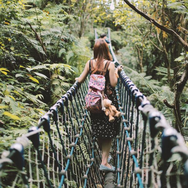 新北市 休閒旅遊 土城桐花公園