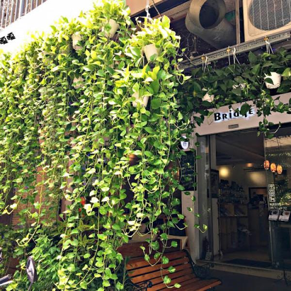 台中市 餐飲 茶館 橋咖啡