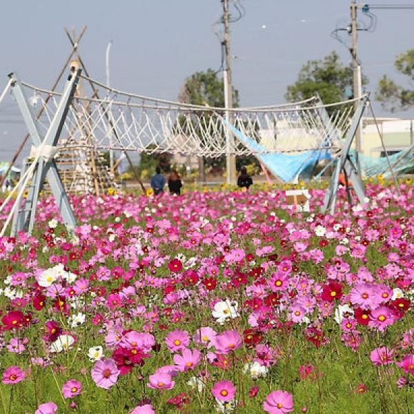 雲林縣 觀光 觀光工廠‧農牧場 石龜溪花海