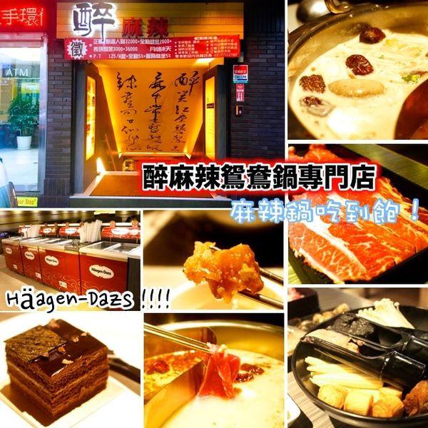 台北市 餐飲 鍋物 火鍋 醉麻辣麻辣鴛鴦鍋