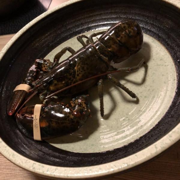 台中市 餐飲 鍋物 其他 灰鴿@南屯店